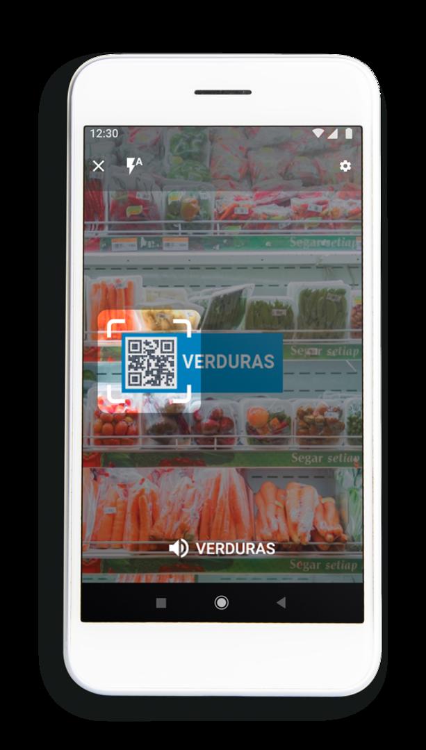 Pantalla de la app Asistente Visual